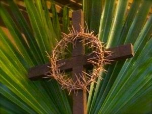 palm and cross ith thorns