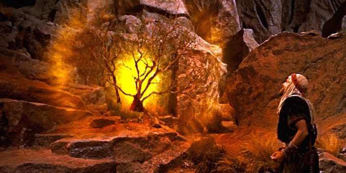 BEYOND THE BURNING BUSH: THE CALL FOR FRUITFULNESS HOMILY FOR THE ...