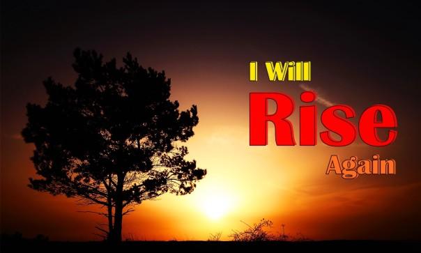 I will rise again2